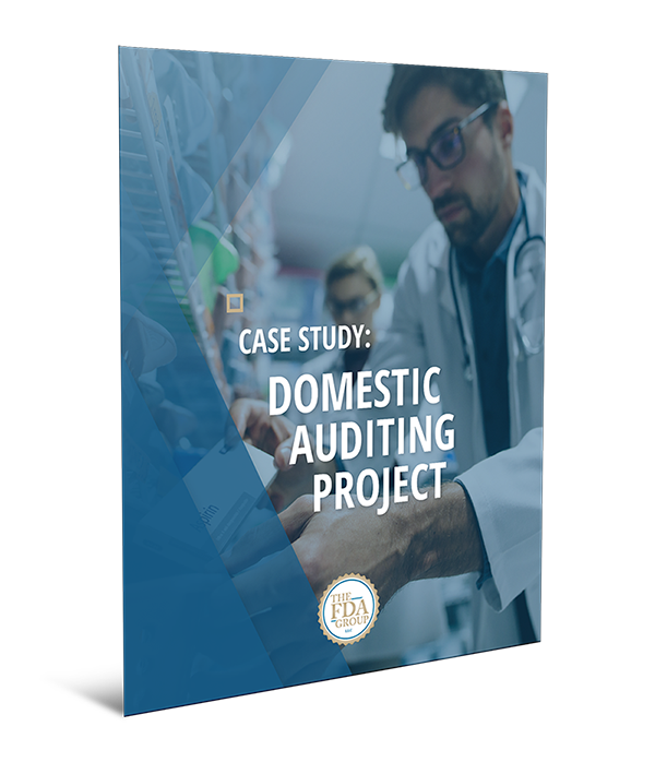 Domestic Auditing Project