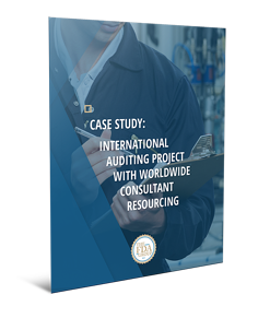 fda-CaseStudy-InternationalAuditingProjectwWorldwideConslutantResourcing-Cover-Small.png