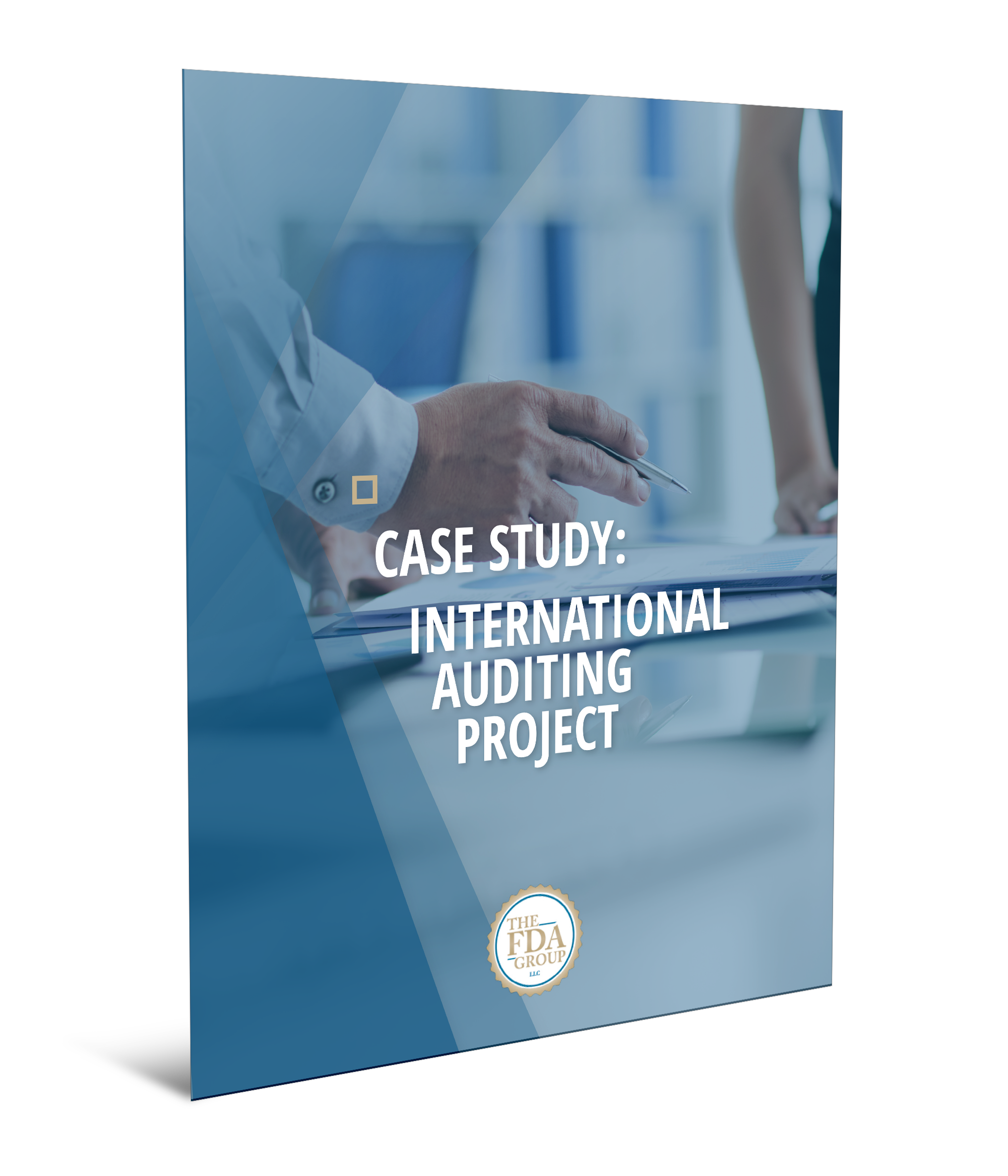 Case Study: International Auditing Project