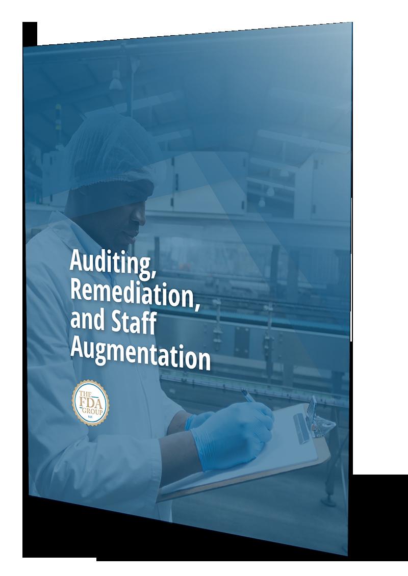 Auditing, Remediation, and Staff Augmentation