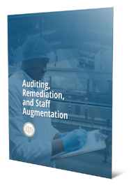 Auditing, Remediation, and Staff Augmentation